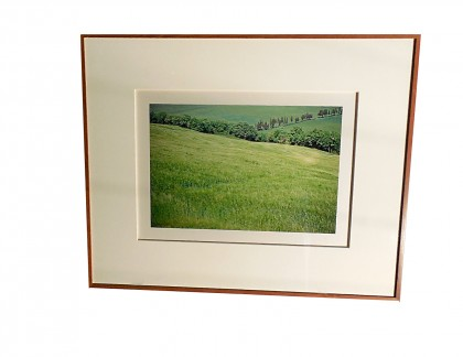 Framed Color Photograph 2 by Jim Laser- view 1