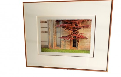 Framed Color Photograph 3 by Jim Laser