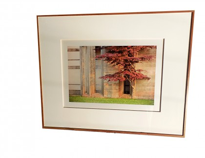 Framed Color Photograph 3 by Jim Laser- view 1