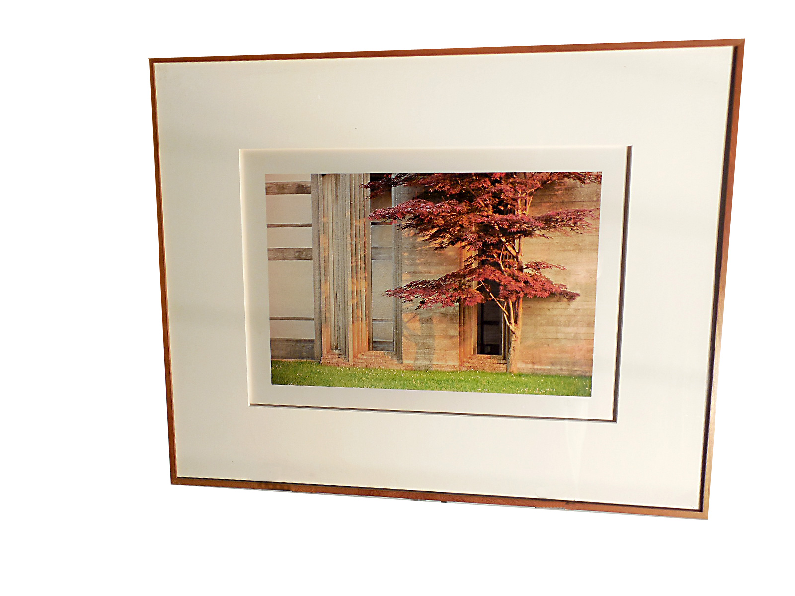Framed Color Photo by Jim Laser